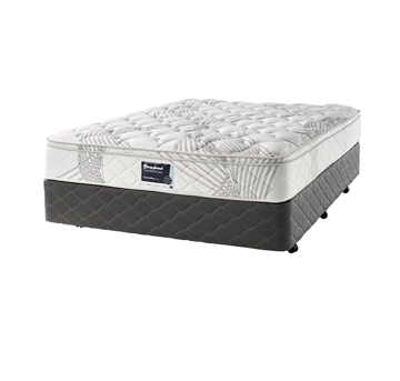 Picture of Sleepyhead - Executive Plush Bed